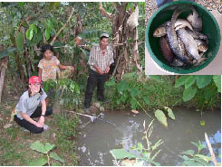 Family fishfarm with inset of produce