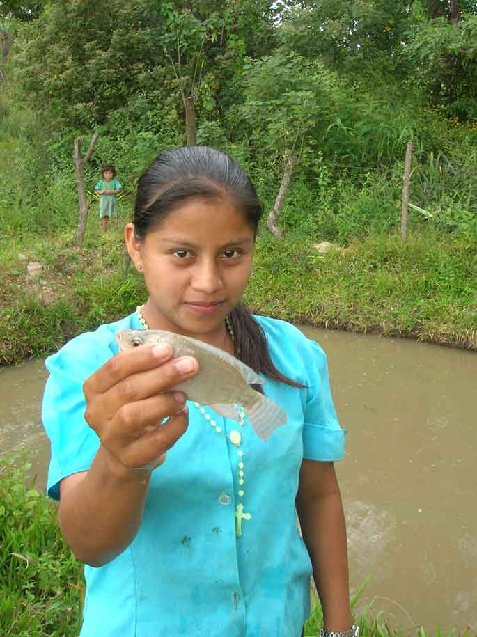 Honduran woman stands in front of the large family fish farm holding a small Tilapia